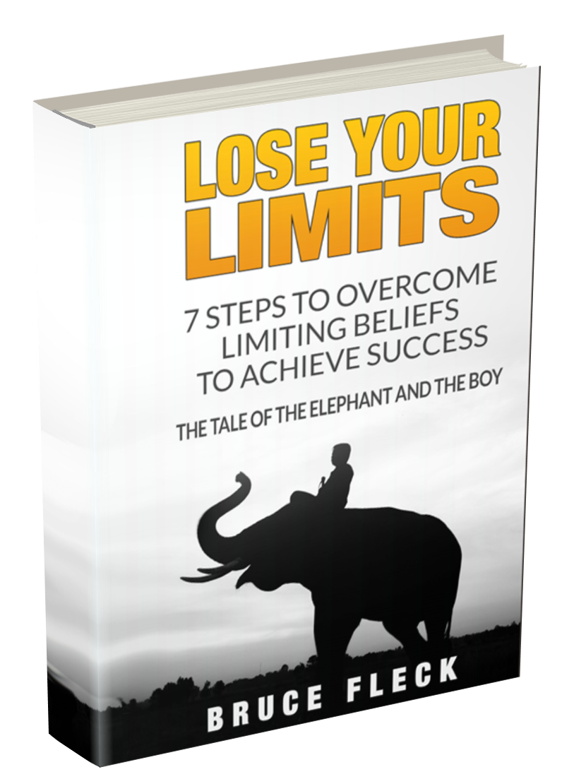 Lose Your Limits Book 3D Cover